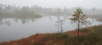 Par nacionālo parku