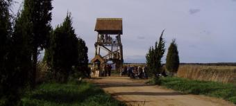 CEMEX putnu vērošanas tornis un Niedrāja laipa