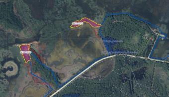 Ķemeru Nacionālais parks aicina uz Mitrāju dienas talku  zāļu purvā