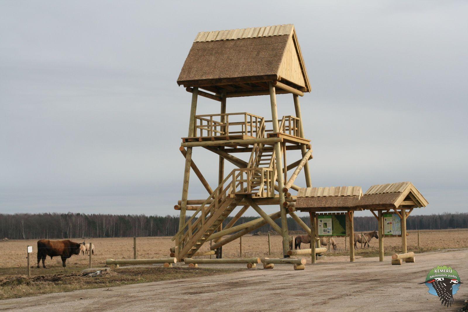 Skatu tornis Dunduru pļavās. Foto: Andis Liepa